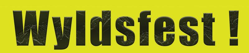 wyldsfest poster_72dpi